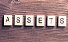 Asset Management Firm