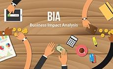 Impact Analysis Support